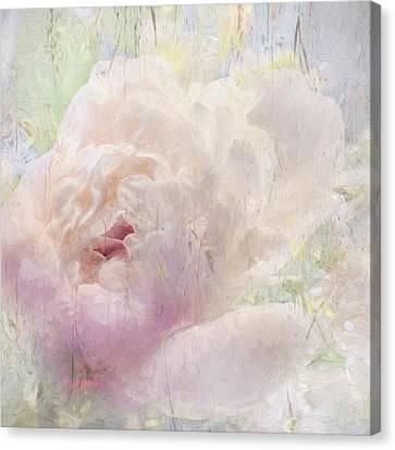 Spring Peony Canvas Print by Karen Lynch