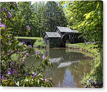 Spring Reflections Of An Ancient Mill Canvas Print