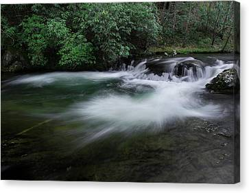 Canvas Print featuring the photograph Spring River by Mike Eingle
