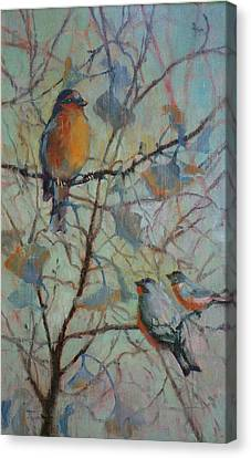 Canvas Print - Spring Robin And Company by Donna Shortt