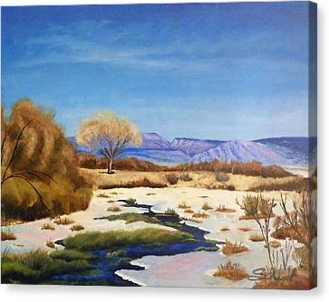 Spring Runoff Canvas Print by Sherril Porter