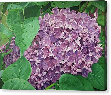 Spring Scent Canvas Print by Harlan