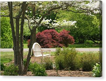Spring Seating Canvas Print