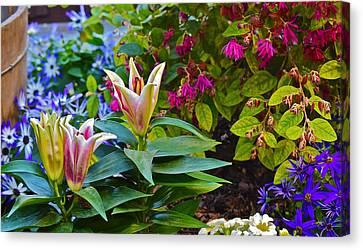 Spring Show 15 Lilies Canvas Print