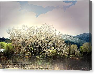 Canvas Print featuring the photograph Spring Snow Inspiration by Anastasia Savage Ealy