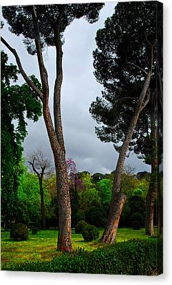 Spring Storm Over Park Retiro Canvas Print by Georgia Nick