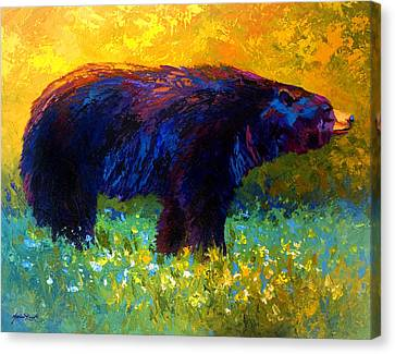 Spring Stroll - Black Bear Canvas Print by Marion Rose