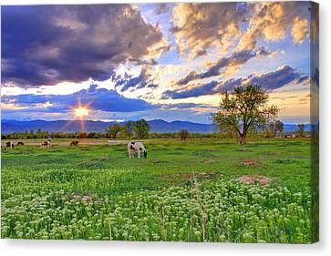 Spring Sunset Over The Rockies Canvas Print by Scott Mahon
