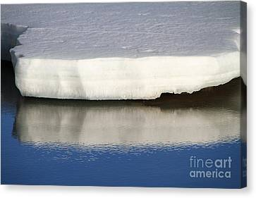 Canvas Print featuring the photograph Spring Thaw by Edward R Wisell
