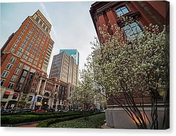 Spring Time On Boylston Street Boston Massachusette Canvas Print by Toby McGuire