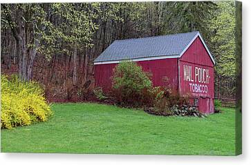 Canvas Print featuring the photograph Spring Tobacco Barn by Bill Wakeley
