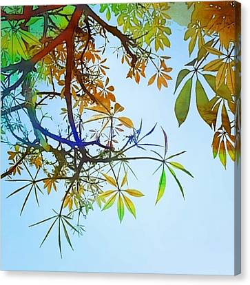 #spring #tree #leaves With #watercolor Canvas Print by Shari Warren