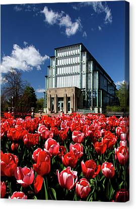 Spring Tulips In Front Of The Jewel Box Forest Park Canvas Print by Garry McMichael