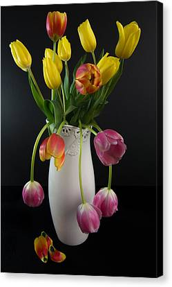 Spring Tulips In Vase Canvas Print