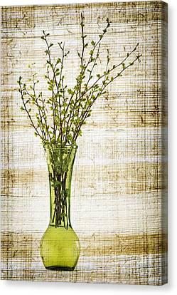 Spring Vase Canvas Print