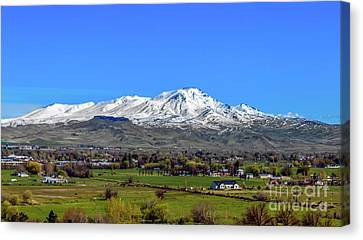Canvas Print featuring the photograph Spring View Of Squaw Butte by Robert Bales