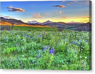 Fort Collins Canvas Print - Spring View by Scott Mahon