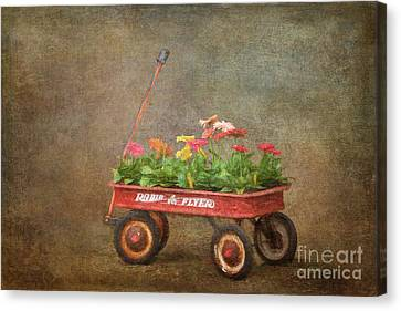 Spring Wagon Canvas Print by Jayne Carney
