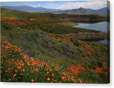 Canvas Print featuring the photograph Spring Wildflowers At Diamond Lake In California by Jetson Nguyen