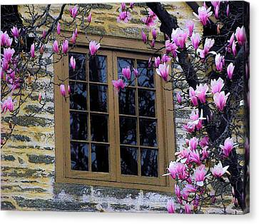 Spring Window Canvas Print