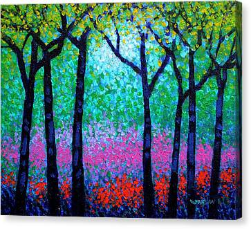 Spring Woodland Canvas Print by John  Nolan