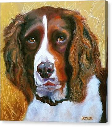Springer Spaniel Canvas Print by Susan A Becker