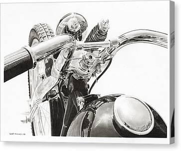 Springer Canvas Print by Tim Odell