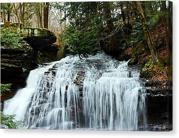 Canvas Print featuring the photograph Springfield Falls by Skip Tribby