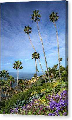 Canvas Print featuring the photograph Springtime At Heisler Park by Cliff Wassmann