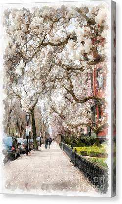 Springtime Boston Back Bay Canvas Print