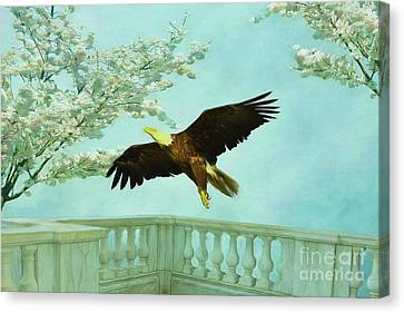Springtime Eagle Canvas Print by Deborah Benoit