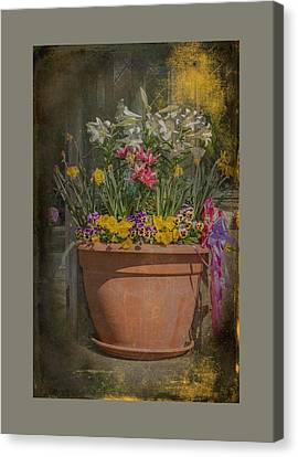 Springtime Flowers Canvas Print by Mother Nature