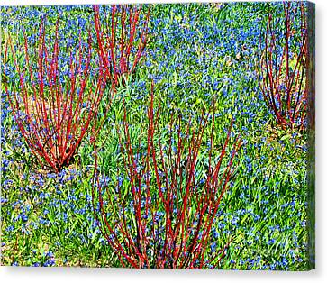 Springtime Impression Canvas Print by Ann Horn