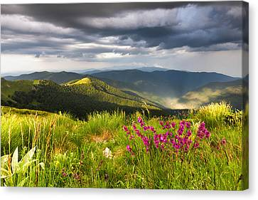 Springtime Mountain Canvas Print