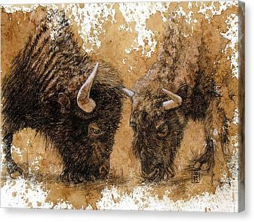 Springtime Nosh Canvas Print by Debra Jones