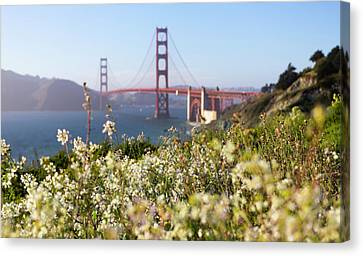 Canvas Print featuring the photograph Springtime On The Bay by Everet Regal