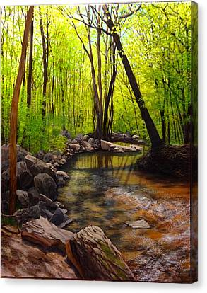Springtime Reflected Canvas Print by David Bottini