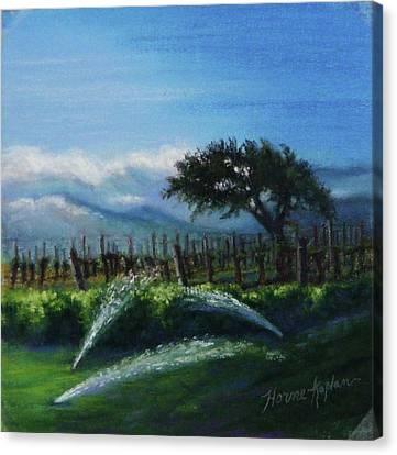 Sprinklers At Pre Dawn Canvas Print