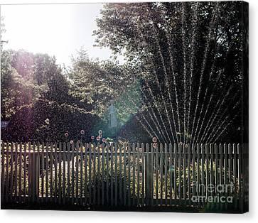 Sprinklers Canvas Print by Rachel Morrison