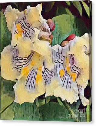 Spun Gold Canvas Print by Kathie Chicoine