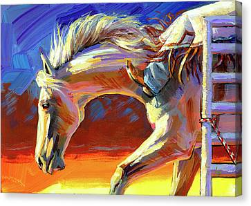 Spurred On Canvas Print
