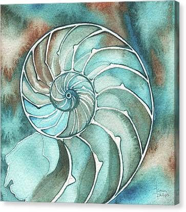 Square Nautilus Canvas Print by Tamara Phillips
