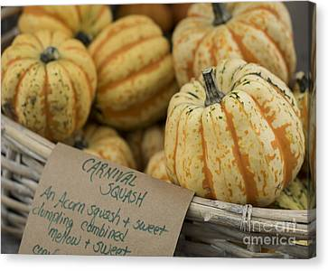 Squash Canvas Print by Juli Scalzi