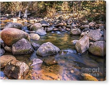 Squaw Creek Canvas Print by Robert Bales