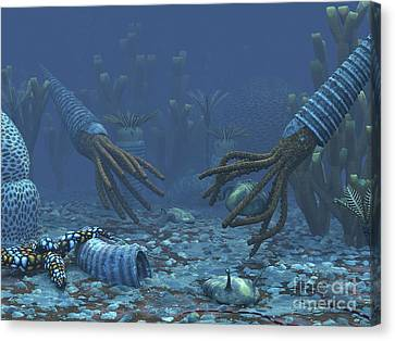 Feeding Canvas Print - Squid-like Orthoceratites Attempt by Walter Myers