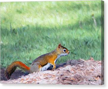 Squirrel In The Park Canvas Print by Jeff Kolker