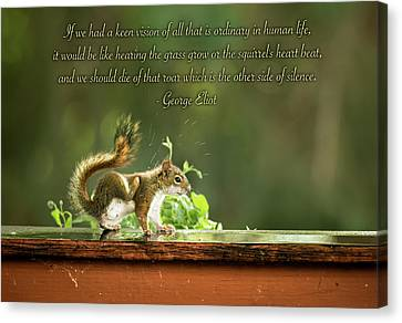 Canvas Print featuring the photograph Squirrel's Heart Beat-george Eliot by Onyonet  Photo Studios
