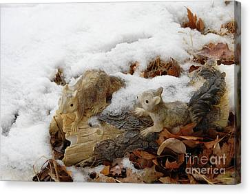 Squirrels In Winter Canvas Print by Bill Hyde