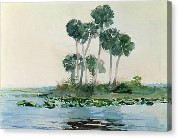 St John's River Florida Canvas Print by Winslow Homer