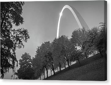 St. Louis Arch Behind The Trees - Black And White Canvas Print by Gregory Ballos